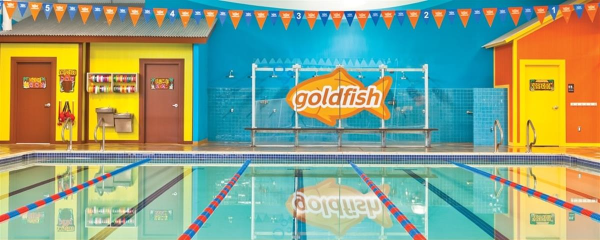 SiteIntel Client Q&A: Goldfish Swim School